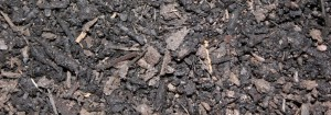 pine o noir mulch for website
